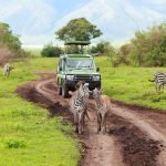 Tanzania: The Ultimate Luxury Adventure