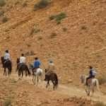 horse-imlil